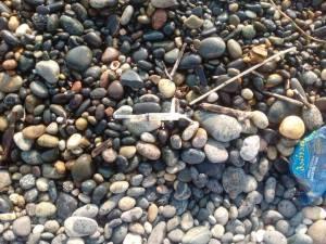 სანაპიროზე ბევრ გამოყენებულ შპრიცსაც მიაგნდებდით